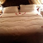 Petals every night on the bed :-D