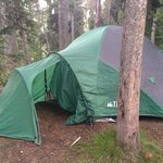 Lewis Lake Campground의 사진
