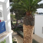 Photo de Insotel Tarida Beach Resort