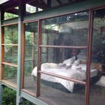 Foto di Crystal Creek Rainforest Retreat
