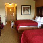 Foto van Country Inn & Suites By Carlson, Anderson