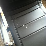 cracker crumbs in desk chair from previous guest