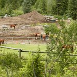 Foto de Myra Canyon Ranch B&B