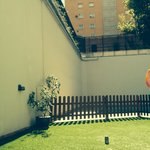 Zona piscina y pared a la calle