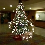 Φωτογραφία: Holiday Inn La Mirada