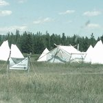 Yellowstone Under Canvas Foto