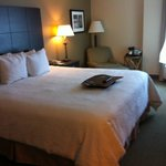 Hampton Inn & Suites Reagan National Airport resmi