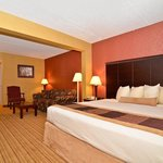 BEST WESTERN PLUS Greensboro Airport Hotel Foto