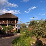 Foto di Manyara Wildlife Safari Camp