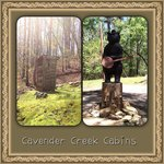 Cavender Creek Cabins Resortの写真