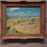 One of the Van Gogh paintings at the museum