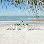 Photo of Doubletree Beach Resort by Hilton Tampa Bay / North Redington Beach