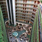 Photo of Embassy Suites Hotel Dallas Love Field