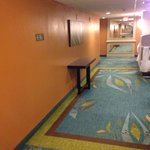 Courtyard by Marriott Miami Homestead照片