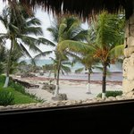 Maya Tulum Retreat & Resort의 사진
