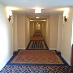 Doubletree Hotel Chicago Oak Brook Foto