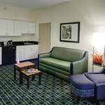 Fairfield Inn East Lansing resmi