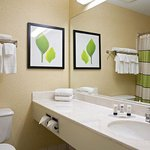 Fairfield Inn Saginaw resmi