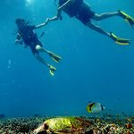 Aussie Divers Phuket - Scuba Diving Foto