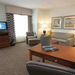 Photo of Homewood Suites by Hilton Albany