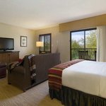 Photo of Hilton Tucson El Con