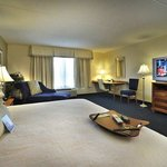 Hampton Inn & Suites ATL-Six Flagsの写真