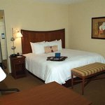 Hampton Inn & Suites Blairsvilleの写真