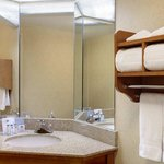 Hampton Inn Chicago-O'Hare International Airport Foto