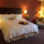 Hampton Inn Rochester Northの写真
