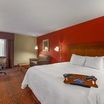 Hampton Inn Merrillville照片