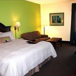 Hampton Inn Kingsport Foto