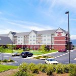Residence Inn Colorado Springs North/Air Force Academy Foto