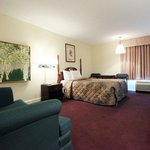 Foto de Americas Best Value Inn-Apex/Raleigh