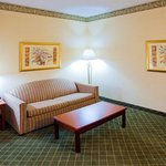 Holiday Inn Express I-95 Beltway-Largo resmi