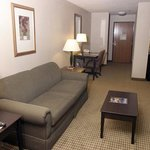 Holiday Inn Express Hotel & Suites Fort Worth (I-20)の写真