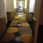Foto de Holiday Inn Express Sanford