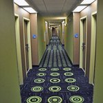Holiday Inn Express Plant City Foto