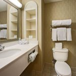 Φωτογραφία: Holiday Inn Express Hotel & Suites DFW - Grapevine