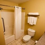 Holiday Inn Express Hotel & Suites Chicago-Algonquin照片