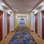Holiday Inn Express Hotel & Suites Tampa Northwest - Oldsmarの写真