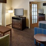 Holiday Inn Express & Suites Saginaw resmi
