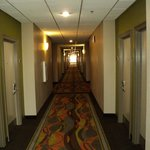 Foto van Holiday Inn Opelousas