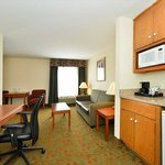 Φωτογραφία: Holiday Inn Express Hotel and Suites Petersburg / Dinwiddie