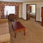 Holiday Inn Express Hotel & Suites Lansing-Okemos (MSU Area)の写真