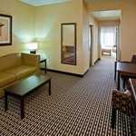 Holiday Inn Express Hotel & Suites Seymour Foto
