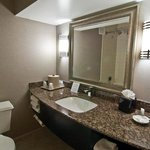 Holiday Inn Express Rolling Meadows Foto