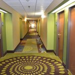 Holiday Inn Express Warrensburgの写真