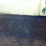 water damage on carpet in exercise room