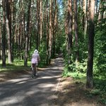 Just some of the beautiful woods you ride through on the way to Jurmala.