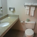 Vanity, commode and towels (not very thick but soft and absorbent).